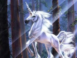 unicornios_03