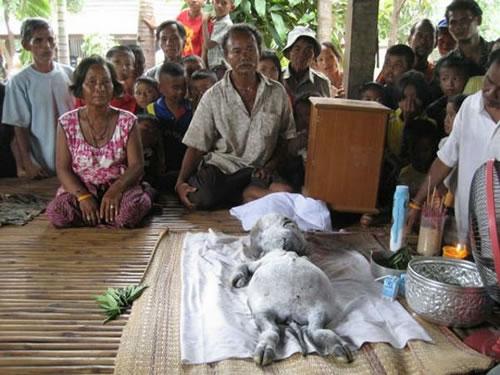 la creatura de tailandia  Criatura-de-tailandia