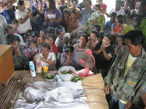 la creatura de tailandia  Criatura-de-tailandia3